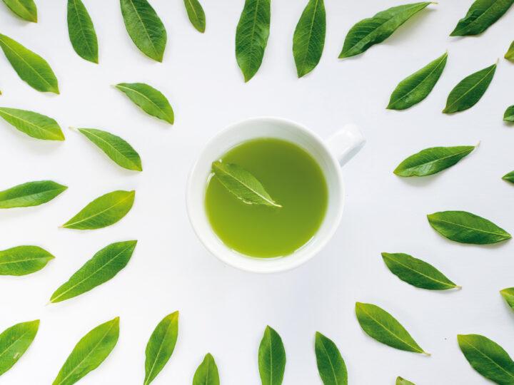 Tè verde: una fonte di polifenoli